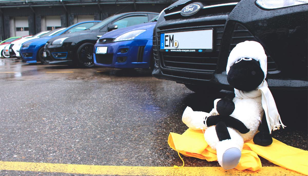 Ein echter Filmstar: Auch Shaun hat Tagestreffen der Ford Freaks Freiburg besucht und dürfte in einem getunten Auto mitfahren.